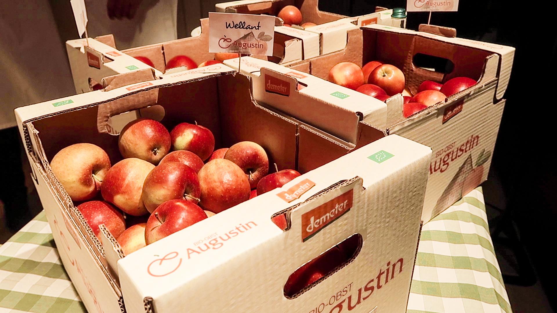 """Äpfel von """"Bio-Obst Augustin"""""""
