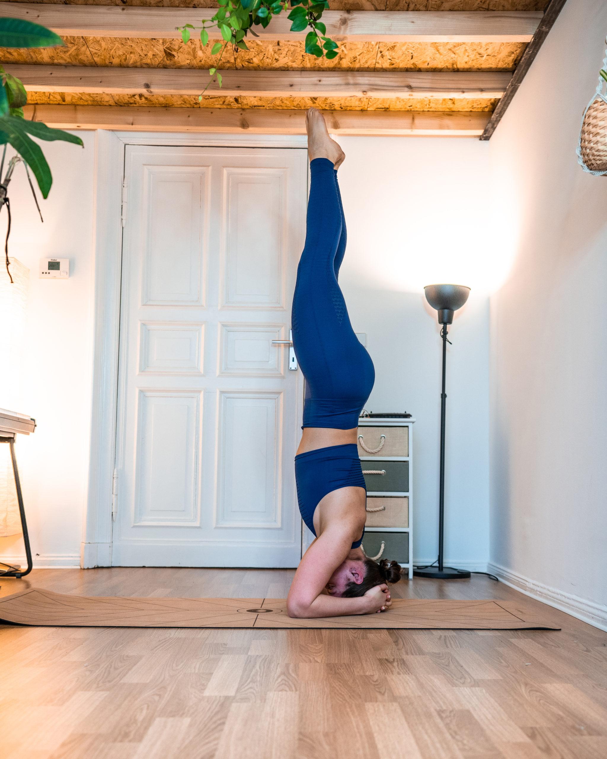 Kopfstand lernen in 50 einfachen Schritten   regina engelhardt